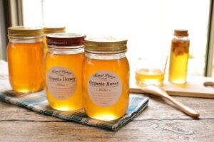 石井養蜂園のハチミツ